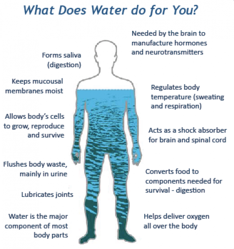 Staying Hydrated During the Winter – Your Water Wellness